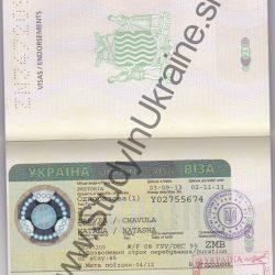 zambia-visa-733×1024