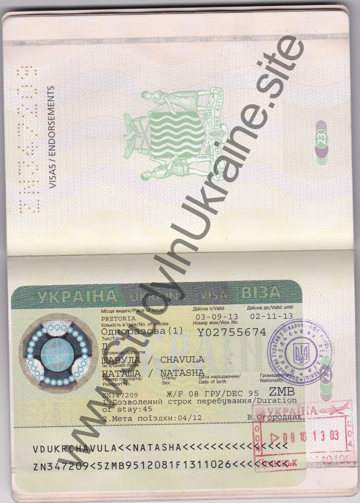Zambia visa 733x1024 study in ukraine official fasted admission zambia visa 7331024 stopboris Choice Image